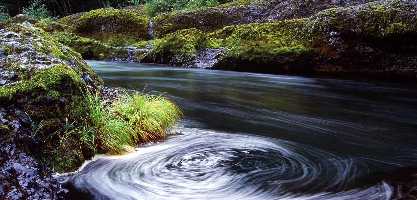 Image result for river eddies