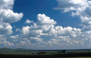 Image result for thermals cumulus